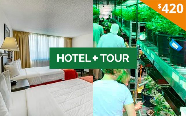 420 Friendly Hotel + CCT Tour