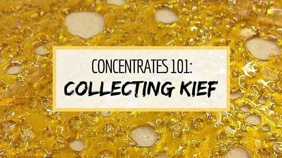 Collect Kief