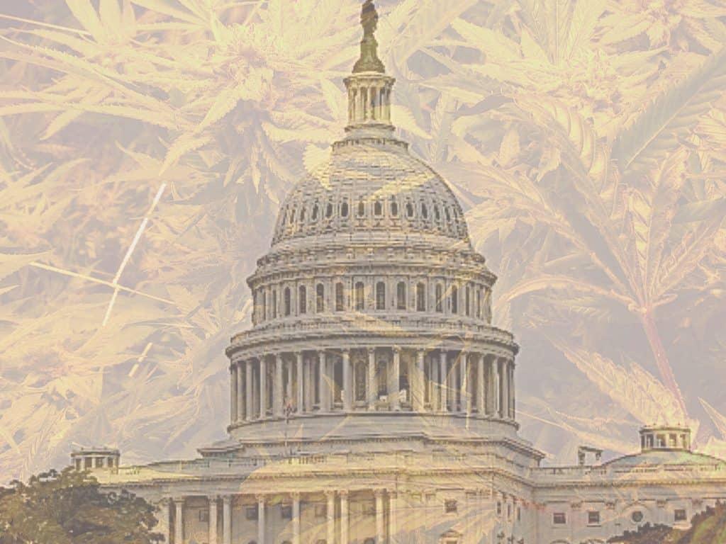 Cannabis Legal in DC