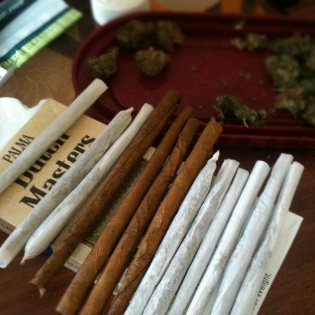 joint-vs-blunts