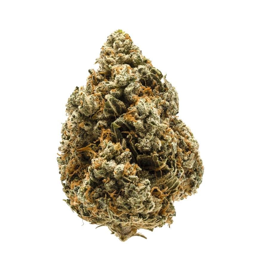 Acapulco Gold Sativa Marijuana Strain