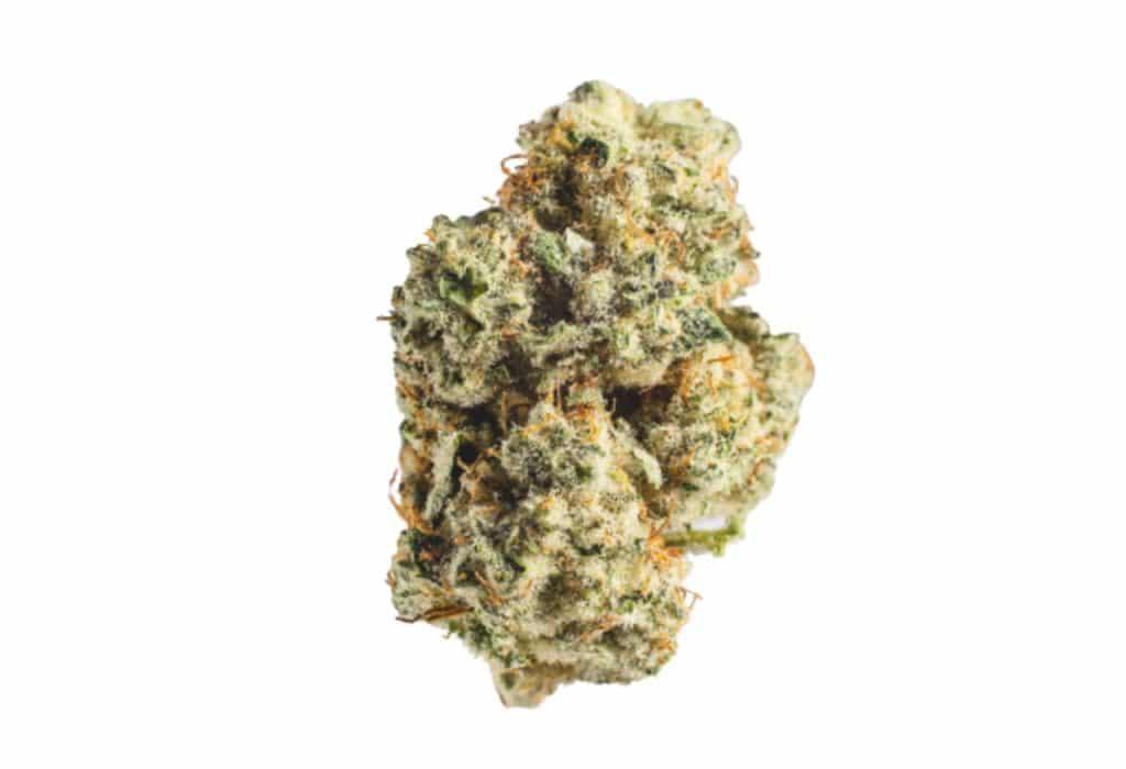 Blue Dream Hybrid Marijuana Strain