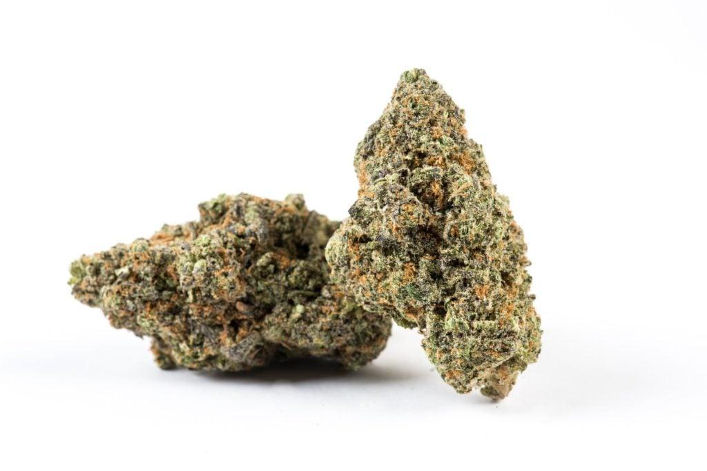 Durban Poison Sativa Marijuana Strain