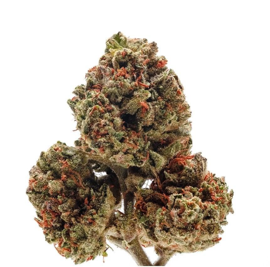 OG Kush Indica Marijuana Strain
